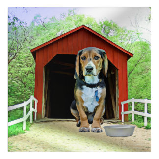 Comical Sandy Creek Covered Bridge Dog House Acrylic Wall Art