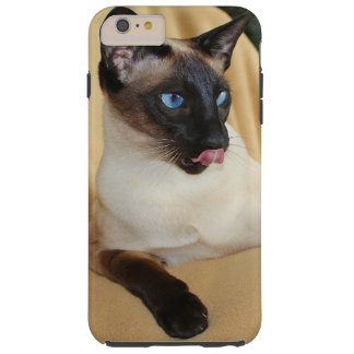 Comical Seal Point Siamese Cat Licking It's Nose Tough iPhone 6 Plus Case
