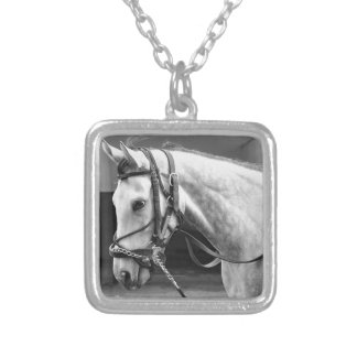 Coming Attraction Silver Plated Necklace