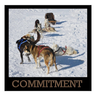 Commitment Sled Dogs Poster