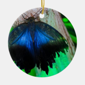Common blue butterfly ceramic ornament