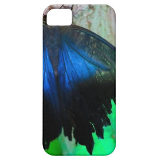 Common blue butterfly iPhone 5 cover