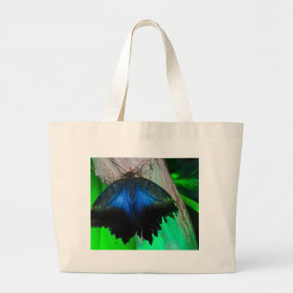 Common blue butterfly large tote bag