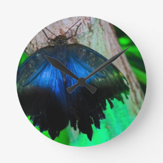 Common blue butterfly round clock