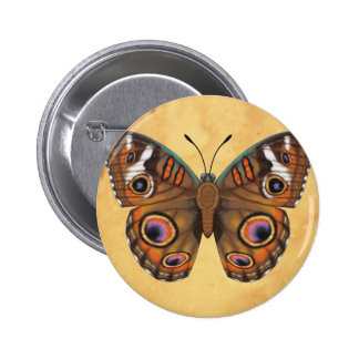 Common Buckeye Butterfly 2 Inch Round Button