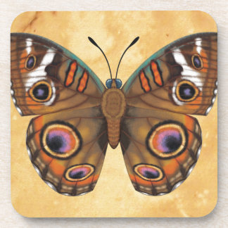 Common Buckeye Butterfly Beverage Coaster