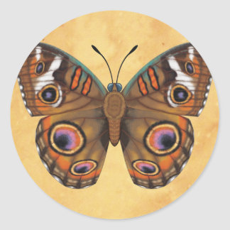 Common Buckeye Butterfly Classic Round Sticker
