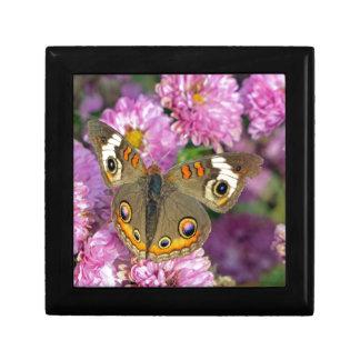 Common Buckeye Butterfly Gift Box