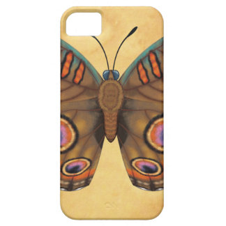 Common Buckeye Butterfly iPhone 5 Cases