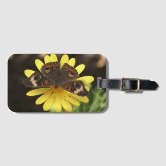 Common Buckeye Butterfly on a Daisy Luggage Tag