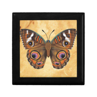 Common Buckeye Butterfly Trinket Boxes