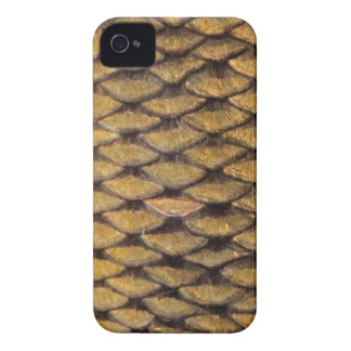 Common Carp - Blackberry Bold iPhone 4 Case-Mate Case