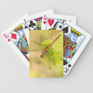 Common Darter Dragonfly Bicycle Playing Cards