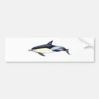 Common dolphin Delphinus delphis Bumper Sticker
