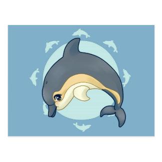 Common dolphin postcard