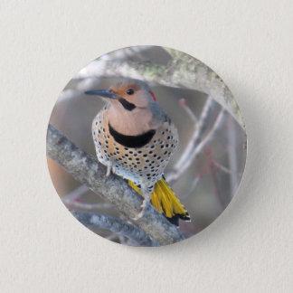 Common Flicker 2 Inch Round Button