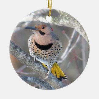 Common Flicker Ceramic Ornament
