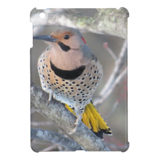 Common Flicker iPad Mini Cover
