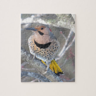 Common Flicker Jigsaw Puzzle