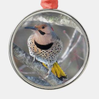 Common Flicker Metal Ornament