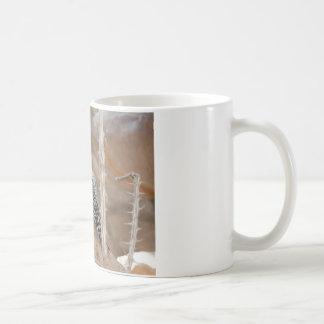 common flicker on nest mug
