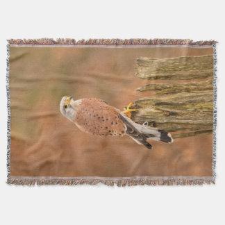 Common Kestrel Throw Blanket