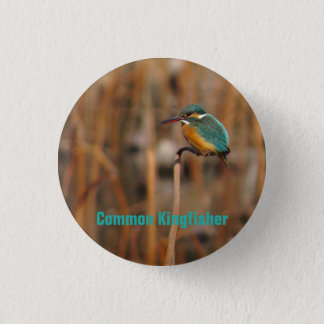 Common Kingfisher 1 Inch Round Button