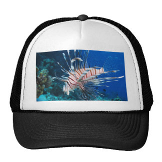 Common lionfish freedom peace and joy trucker hat