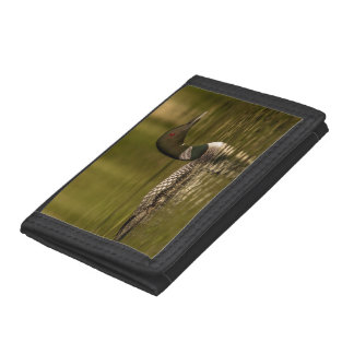 Common Loon Male On Beaver Lake Near Whitefish Trifold Wallets