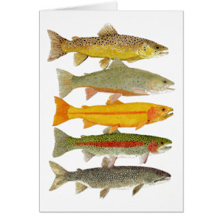 Common Pennsylvania Trout Card