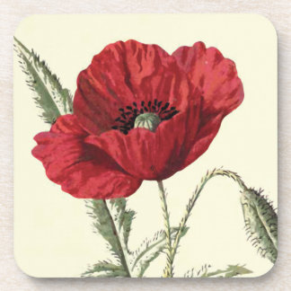 """Common Poppy"" Botanical Illustration Coaster"