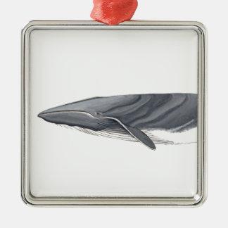 Common Rorcual Silver-Colored Square Ornament