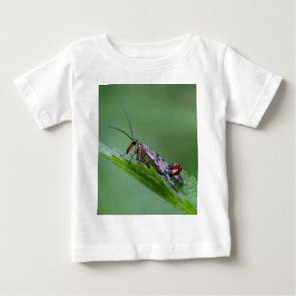 Common Scorpion Fly (Panorpa communis) Baby T-Shirt