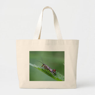 Common Scorpion Fly (Panorpa communis) Large Tote Bag