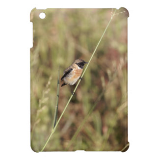 Common Stonechat (Saxicola torquatus) iPad Mini Cover