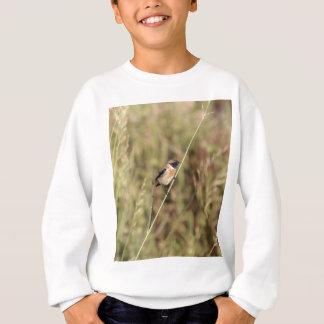 Common Stonechat (Saxicola torquatus) Sweatshirt