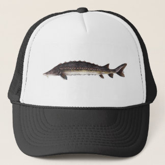 Common Sturgeon Hat