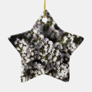 Common thyme ceramic star ornament