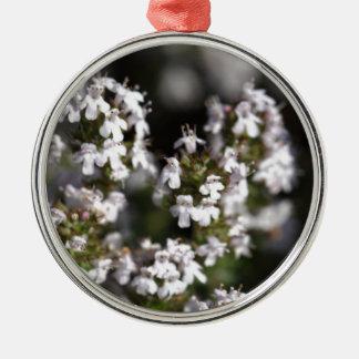 Common thyme Silver-Colored round ornament