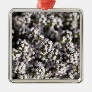 Common thyme Silver-Colored square ornament