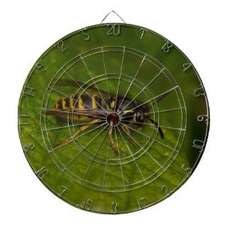 Common Wasp Dartboard
