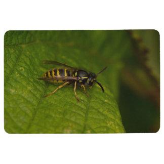 Common Wasp Floor Mat