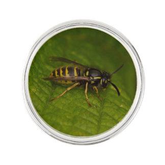 Common Wasp Lapel Pin