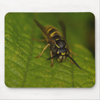 Common Wasp Mouse Pad