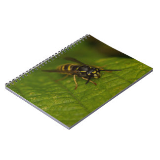 Common Wasp Notebooks