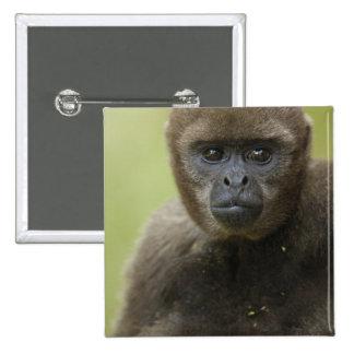 Common Woolly Monkey Lagothris lagothricha), 2 Inch Square Button