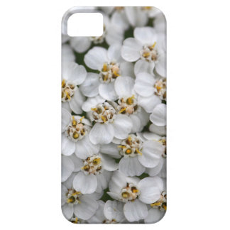 Common yarrow (Achillea millefolium) Case For The iPhone 5