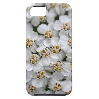 Common yarrow (Achillea millefolium) iPhone 5 Covers