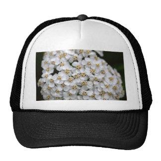 Common yarrow (Achillea millefolium) Trucker Hat