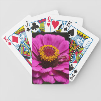 Common zinnia (Zinnia elegans) Bicycle Playing Cards